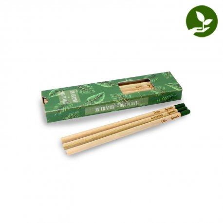 Edmund - Coffret 3 crayons à graines couleur publicitaire - LE cadeau CE